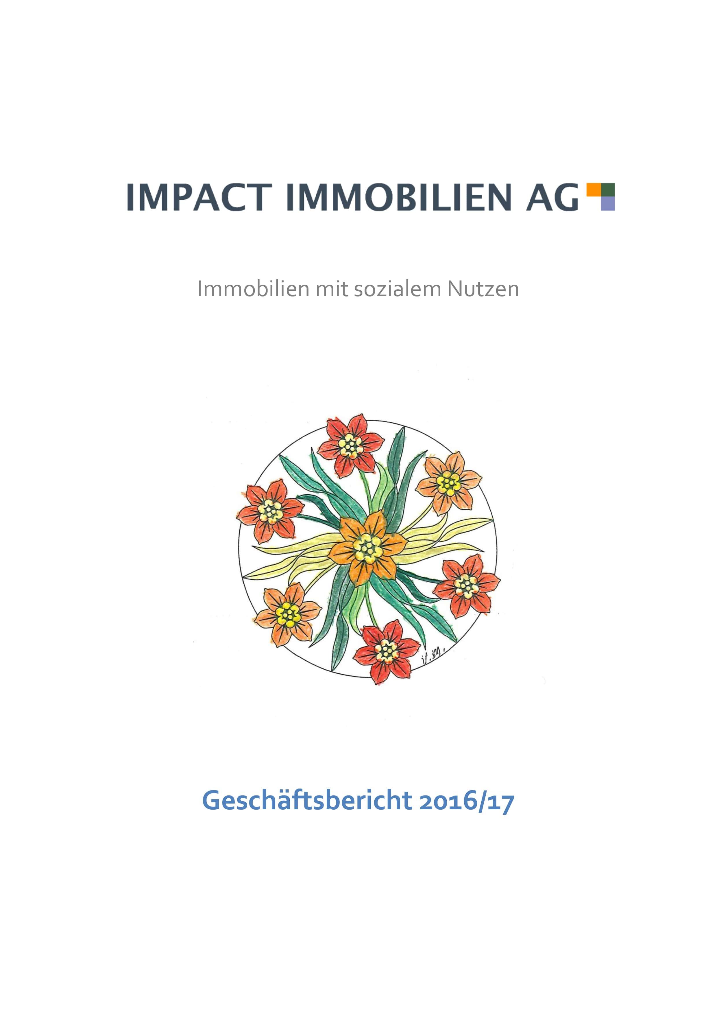 Geschaeftsbericht_IIAG_2016-17-min